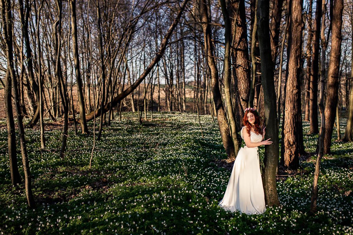 Las, w którym rosną zawilce i pośród nich Pani Wiosna jak na kolorowanka.