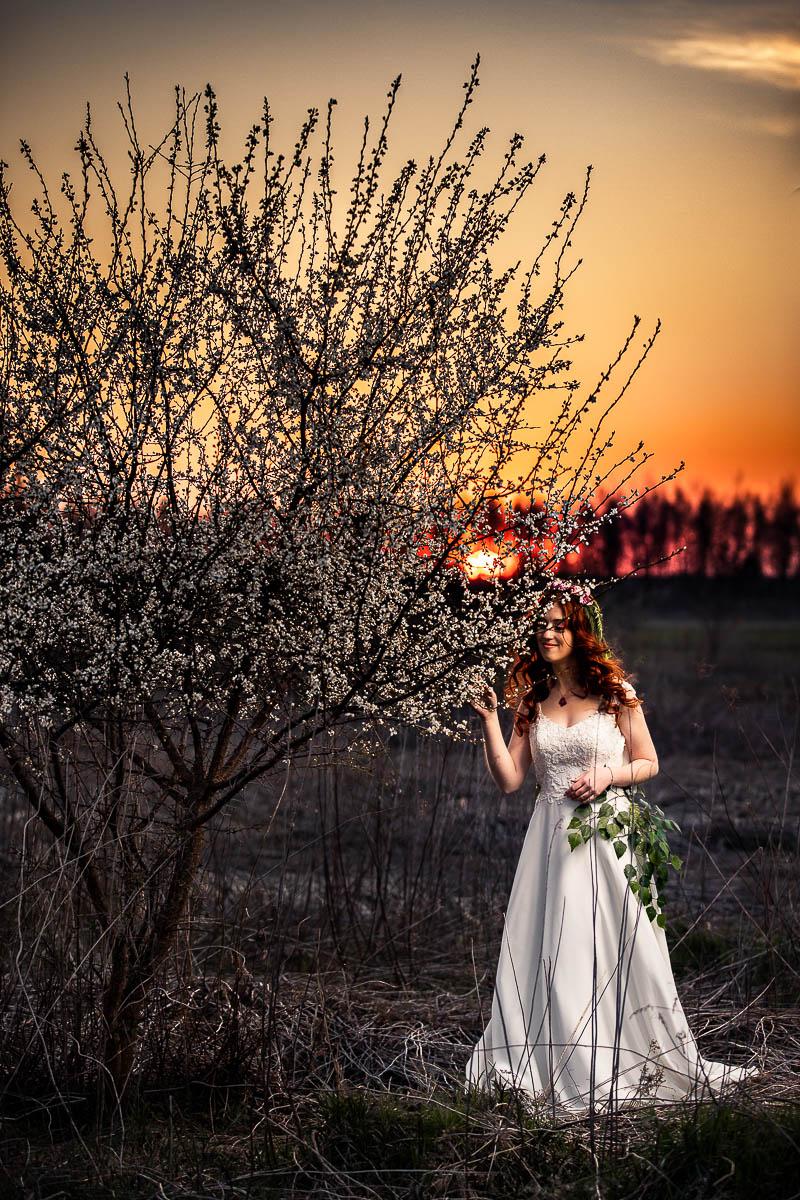 Dziewczyna stoi przy kwitnącym drzewku. Za nią zachód słońca jak na sesja wiosenna o zachodzie słońca.